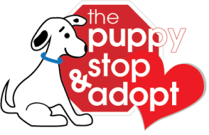 The Puppy Stop and Adopt